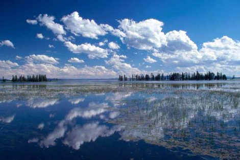 visitare yellowstone lake