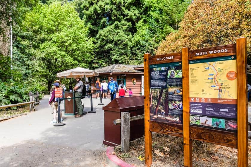 Cosa vedere fra San Francisco e Muir Woods