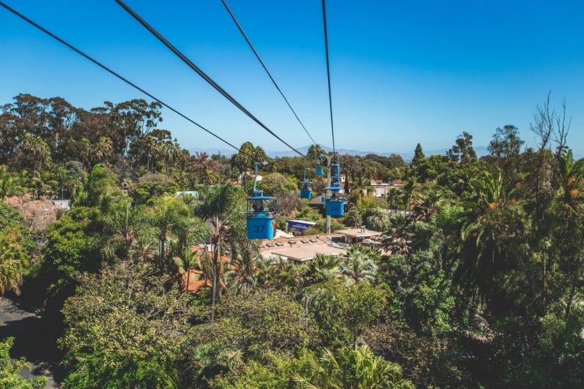 San Diego Zoo cosa vedere